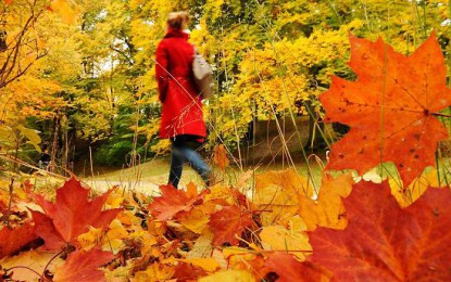Adiós a verano; inicia el otoño