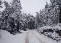 Nieve en Bocoyna y 3 municipios; alertan por frío: Protección Civil