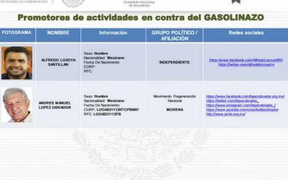 """""""Ficha"""" SEGOB a Blanca Gámez y al Caballo Lozoya como incitadores"""