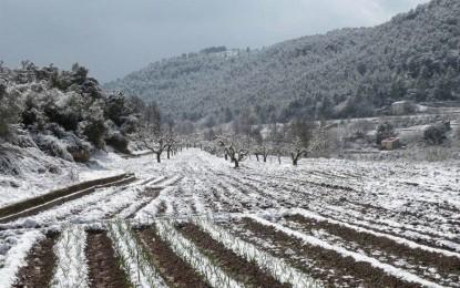 Pagan más de 2mdp a productores que perdieron cosechas