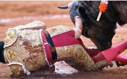 La impresionante cornada al torero mexicano Antonio Romero que le rompió el esfínter
