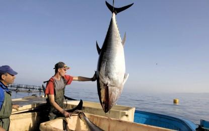 México multará a EU con 163mdd al año por atún