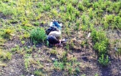 Encuentran ejecutado a policía de Guerrero en La Junta