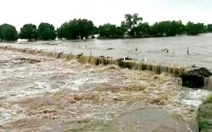 Incomunicados cinco poblados tras desborde de río Papigochi