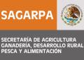 Sagarpa paga 220 mdp por proyectos copiados de Wikipedia y monografias.com