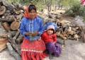 Enfrentarán comunidades indígenas el invierno sin cosecha de maíz