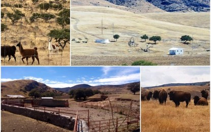 Legales recursos y ranchos de Duarte; aún así FGE embargó: Abogado