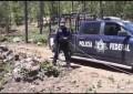 Destruyó Policía Federal 3 narcocampamentos de marihuana en Guachochi