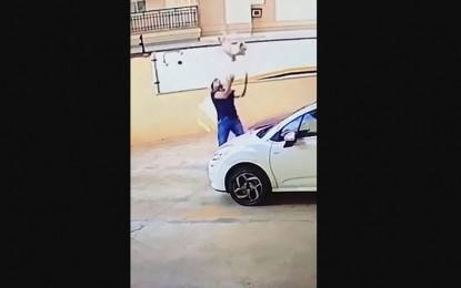 Héroe: salvó a perro que cayó del noveno piso (video)