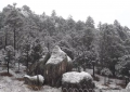 Cierre temporal de tramos carreteros por nevada en Bocoyna y Guachochi