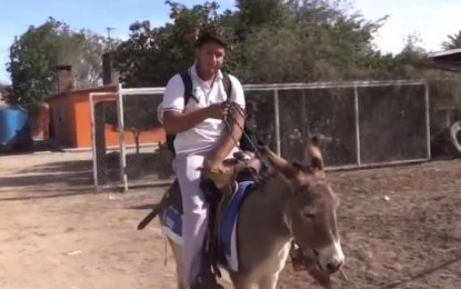 Joven de Sonora va a la escuela en su burro llamado Peña Nieto