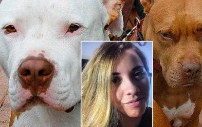 Perros pitbull matan a su dueña en veterinaria de Texas