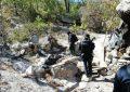 Destruye AEI plantío de amapola y marihuana en Guachochi