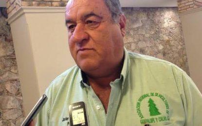 Cambio de gobierno federal afecta aserraderos de Chihuahua y Durango