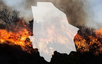 Ceden llamas ante brigadistas: bajan a 21 incendios en la Sierra