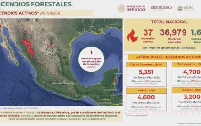 """Incendios en la Sierra de Chihuahua: AMLO explica recortes; """"se actúa"""""""