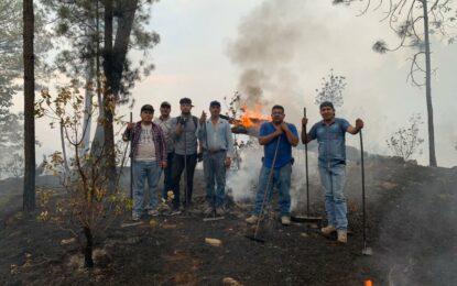 Intensos trabajos para reducir los incendios en Gpe y Calvo