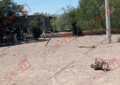Otro ejecutado en Valle de Zaragoza; esta sin identificar
