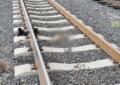Tren embiste a hombre en Camargo y pierde la vida